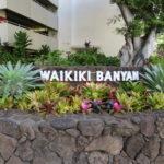 ワイキキ・バニアン / Waikiki Banyan