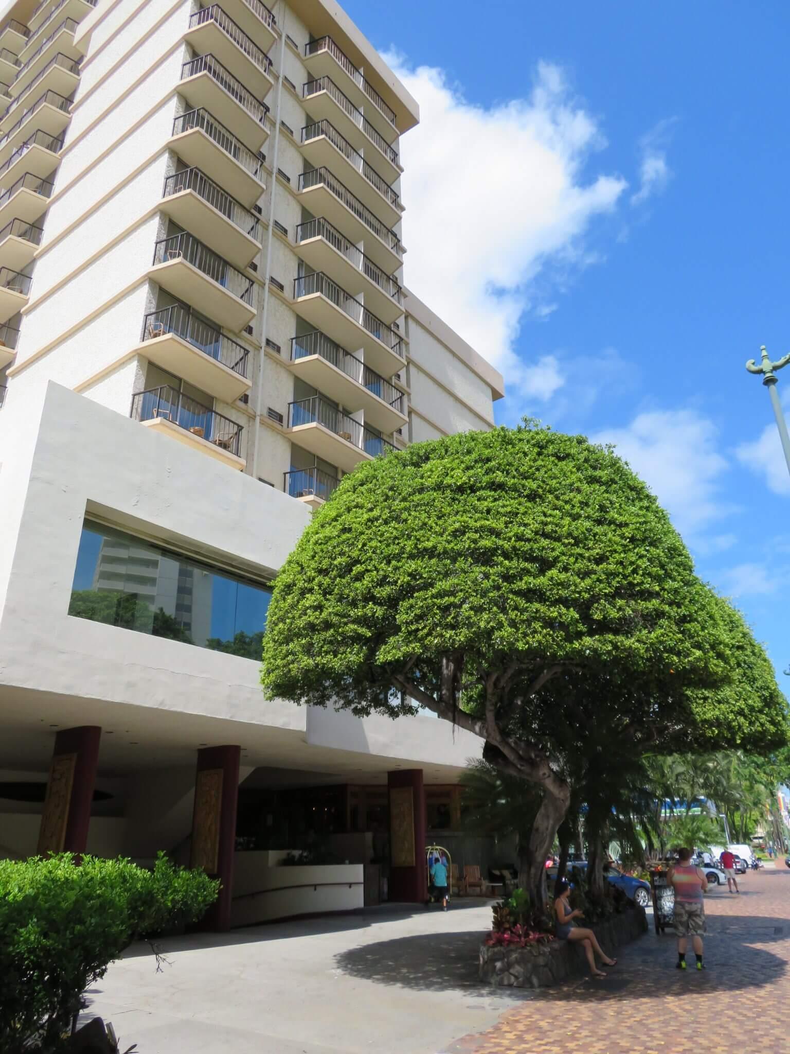 ルアナ・ワイキキ / Luana Waikiki