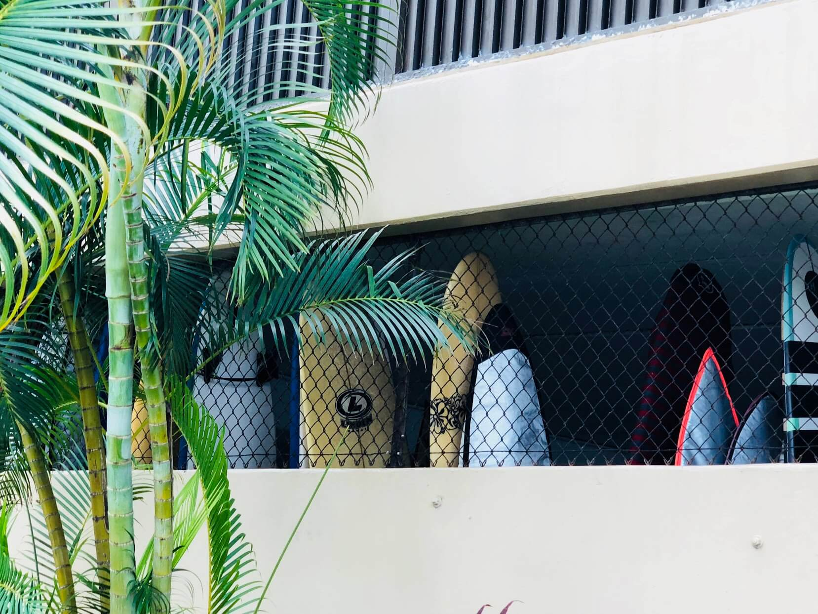 Chateau Waikikiのサーフボード