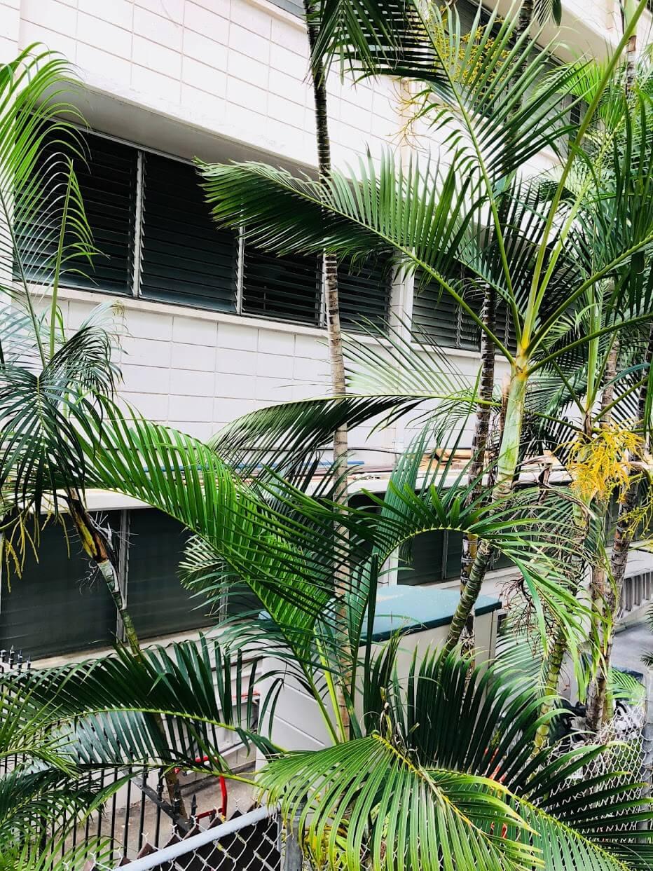 Kaioo Terraceの外観