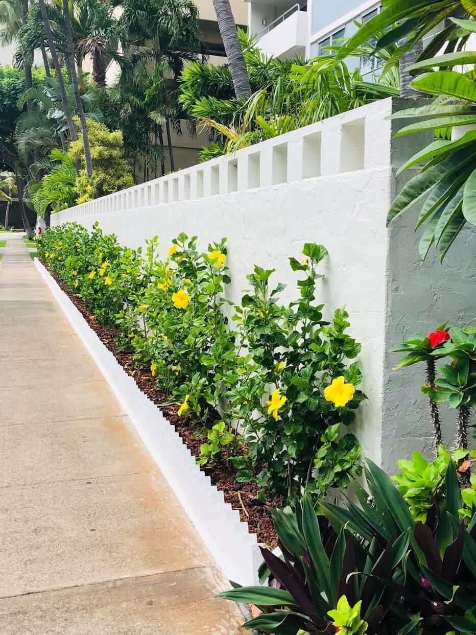 Kaiolu Sunriseの塀