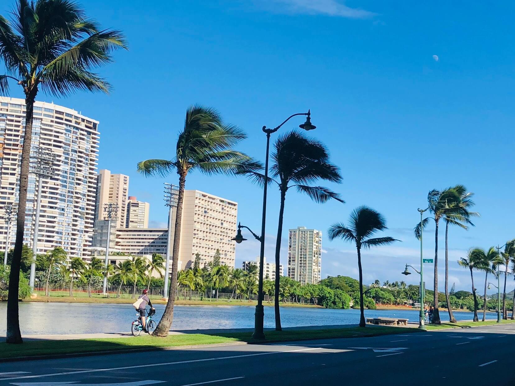 Royal Alohaの河