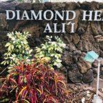Diamond Head Aliiの看板