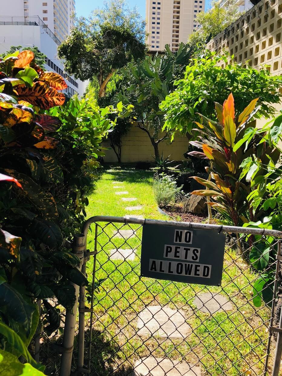 Liliuokalani Plazaの庭