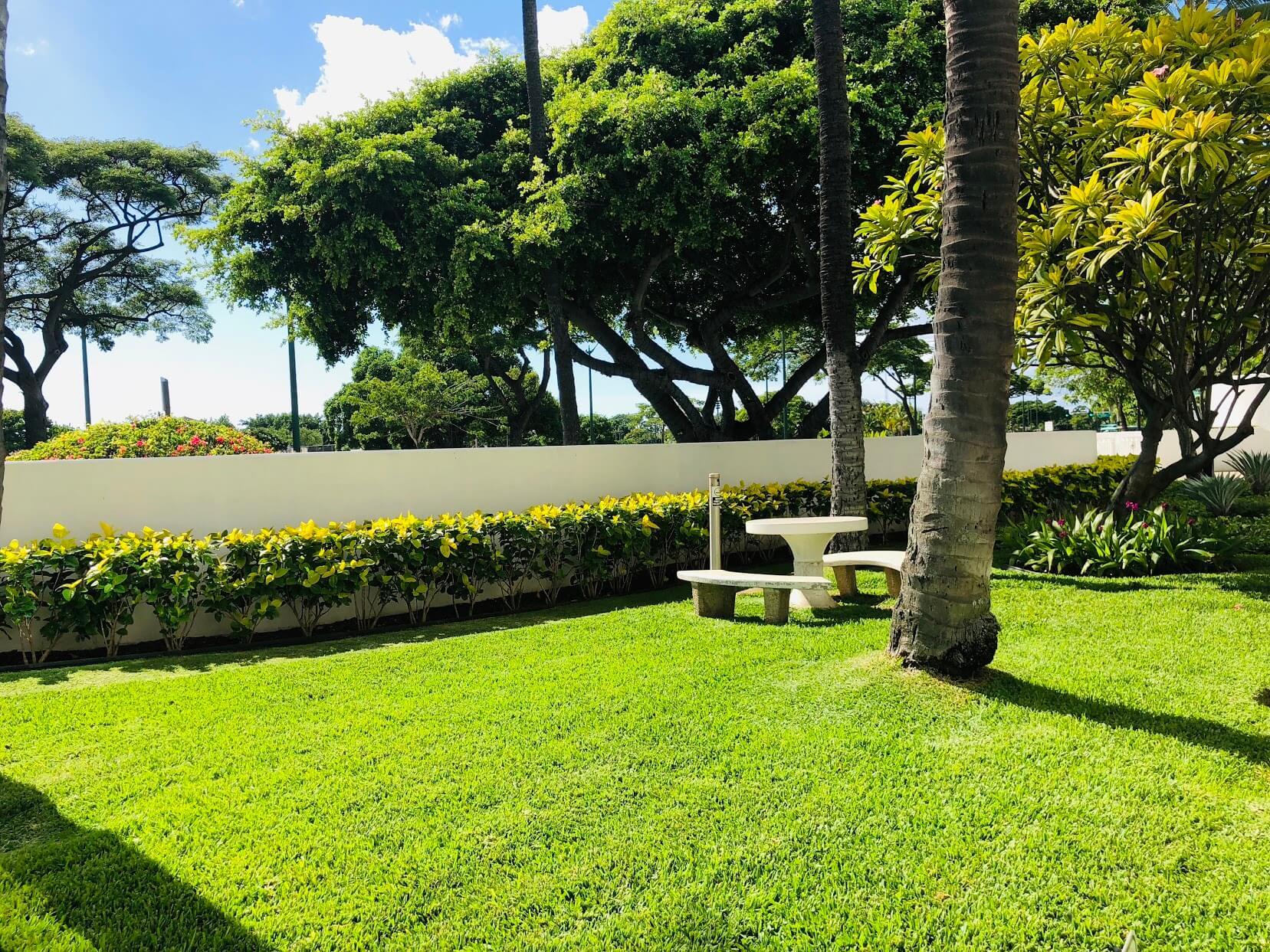 Nauru Towerの芝生