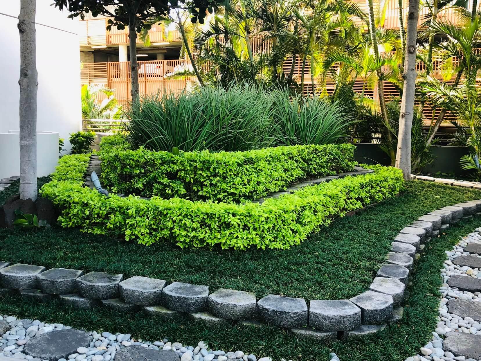 Nauru Towerの植物