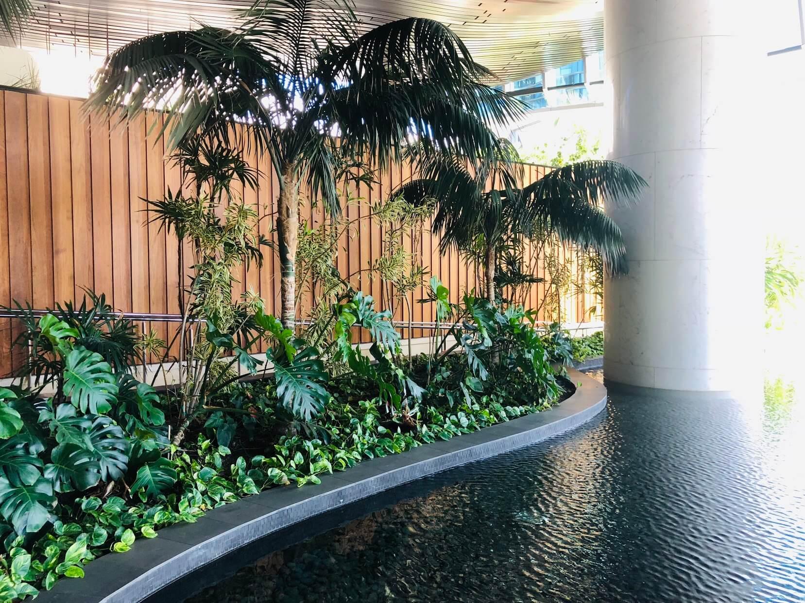 Waieaの池