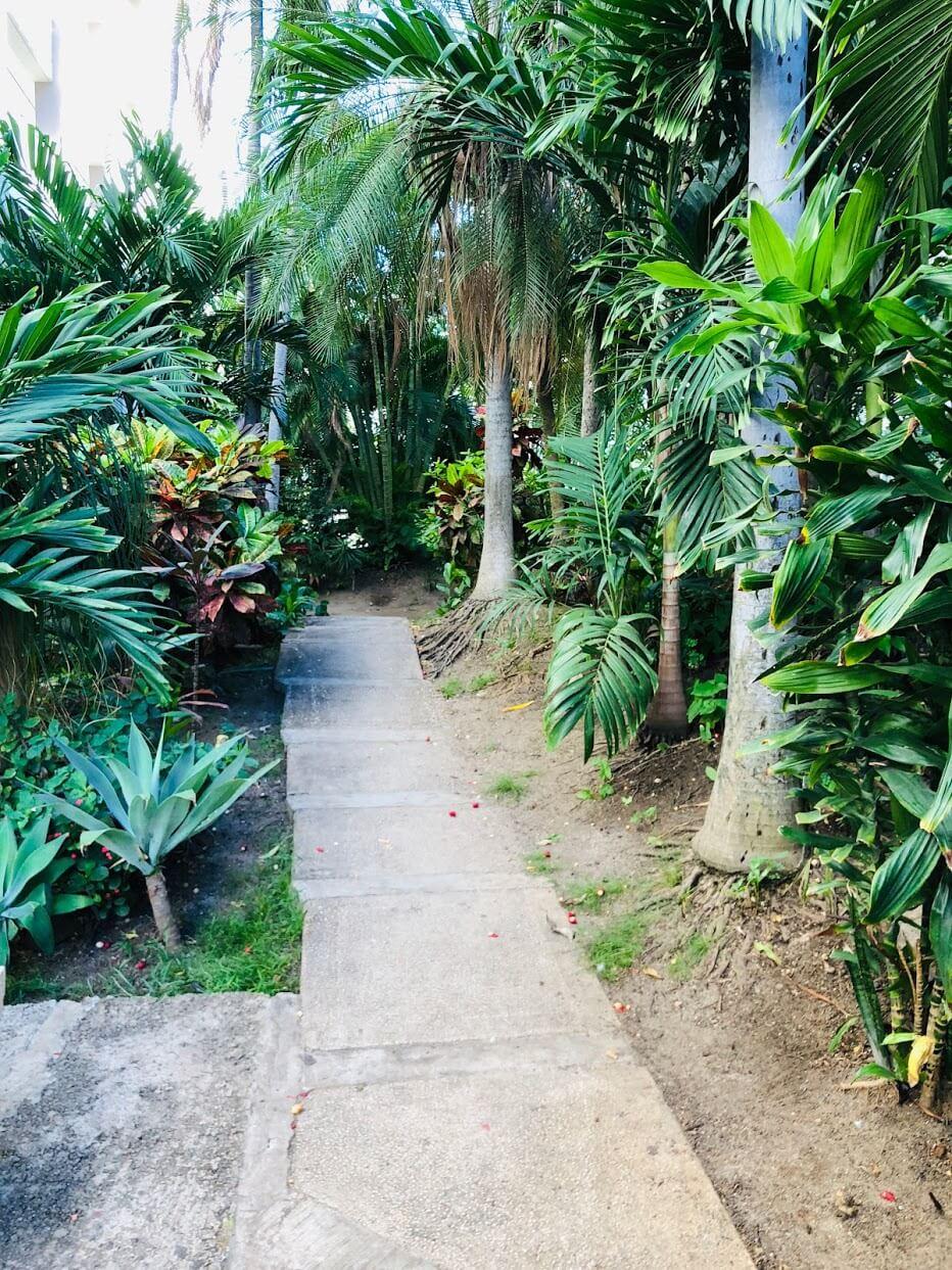 Waikiki Lanaisの庭
