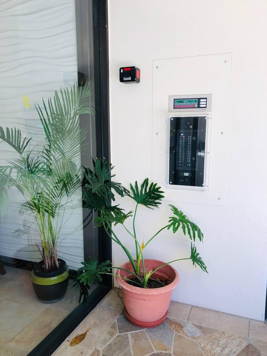 Waikiki Sky Towerの植物