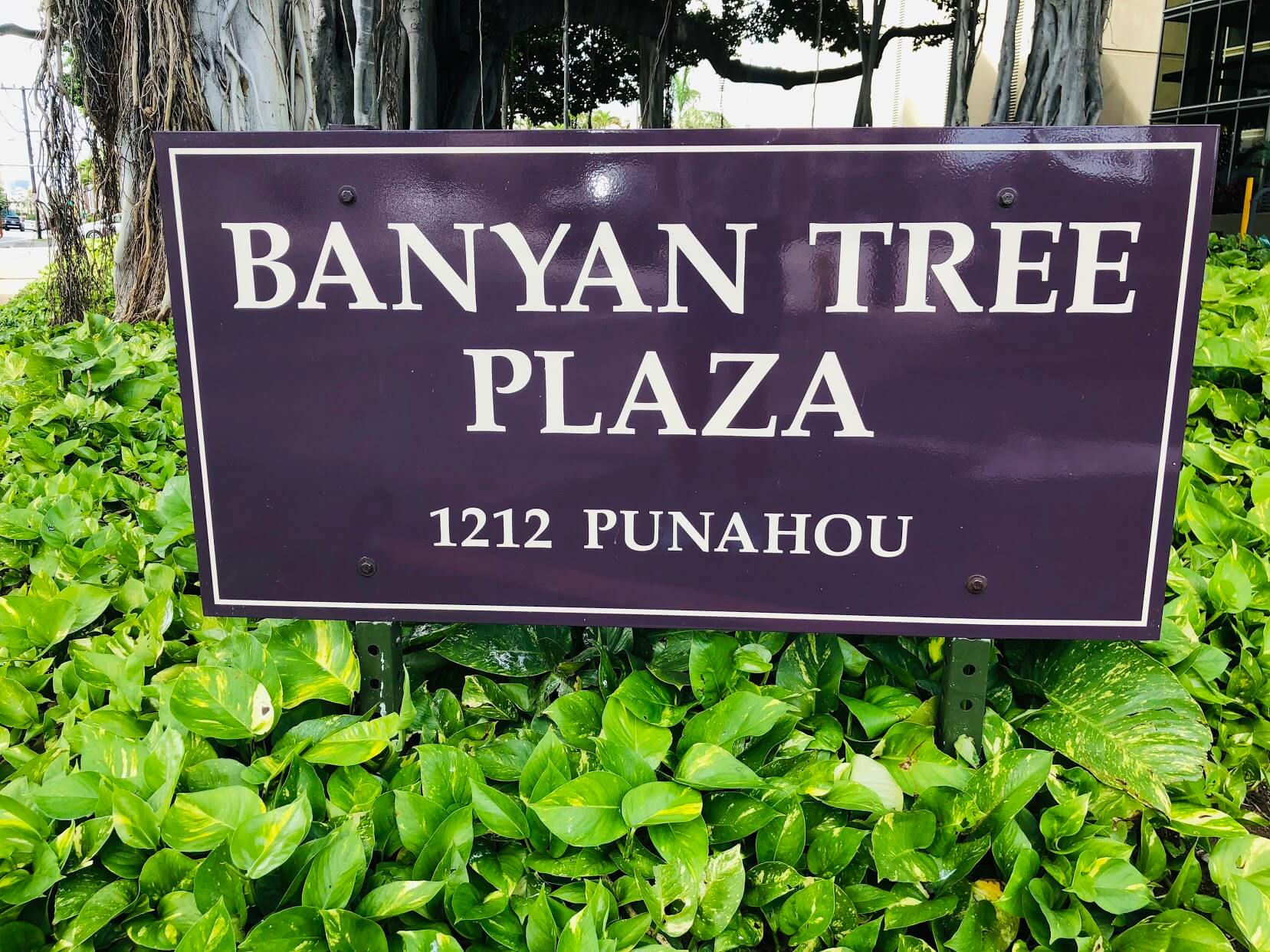 Banyan Tree Plaza 1212の看板