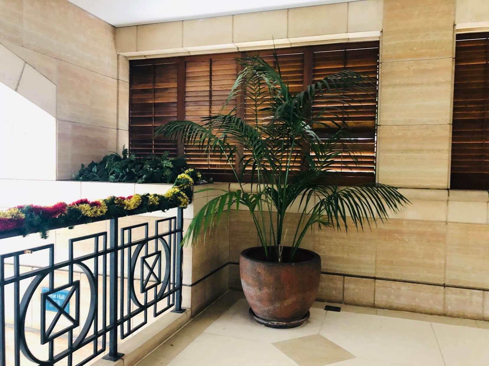 Courtyards at Punahouの植木鉢