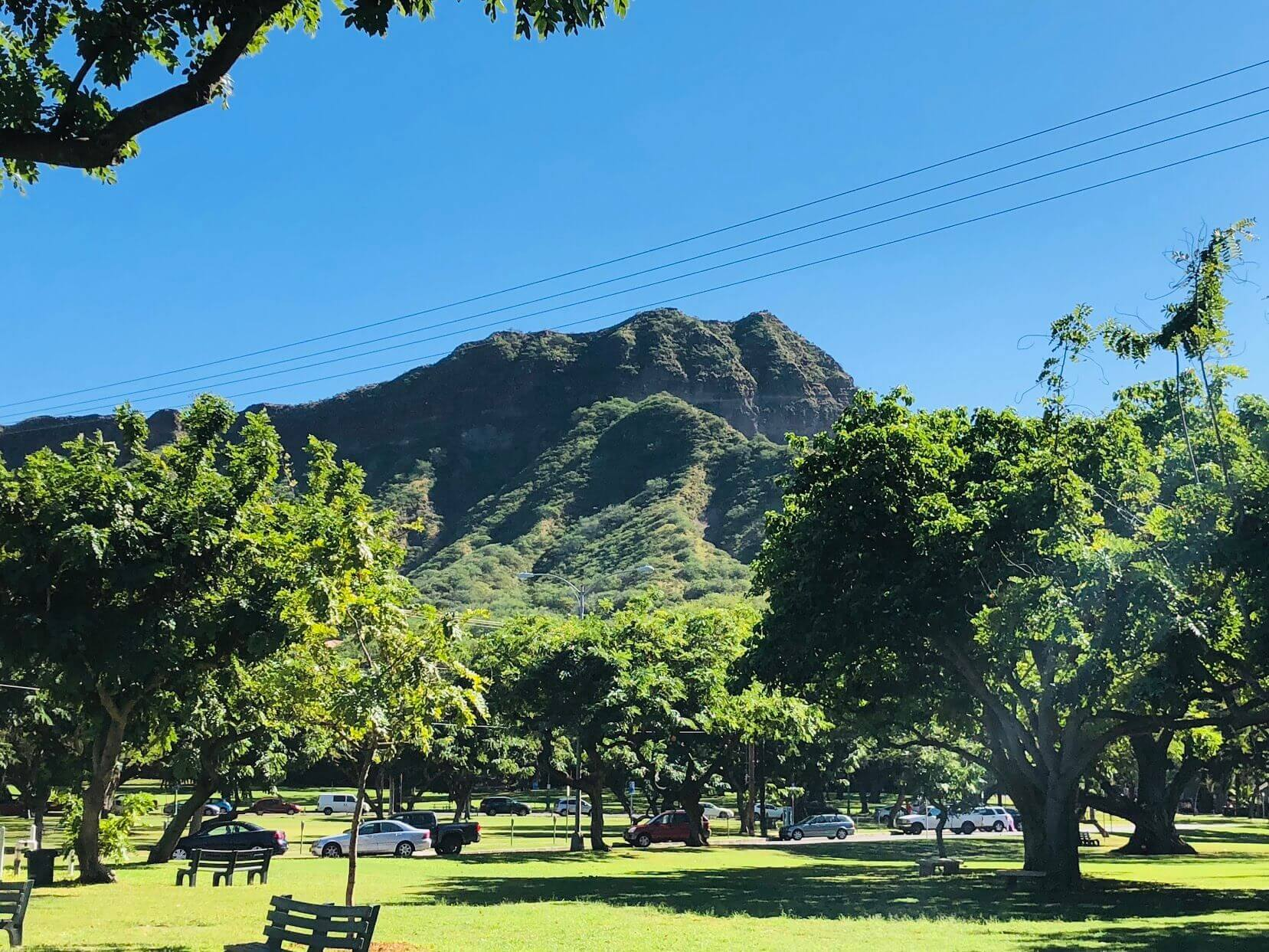 Diamond Head Beach Hotelの風景