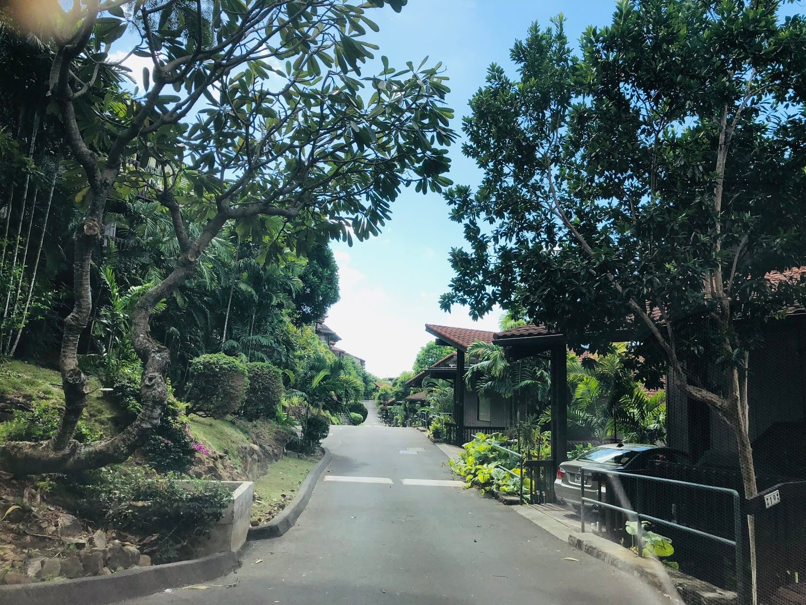 Kahala View Estatesの道路