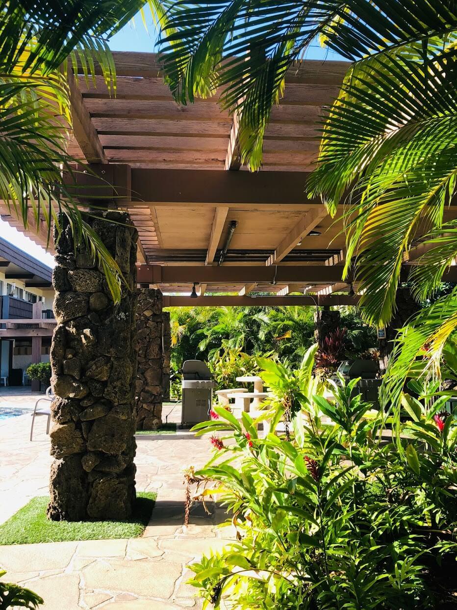 Kaimala Marinaの植物