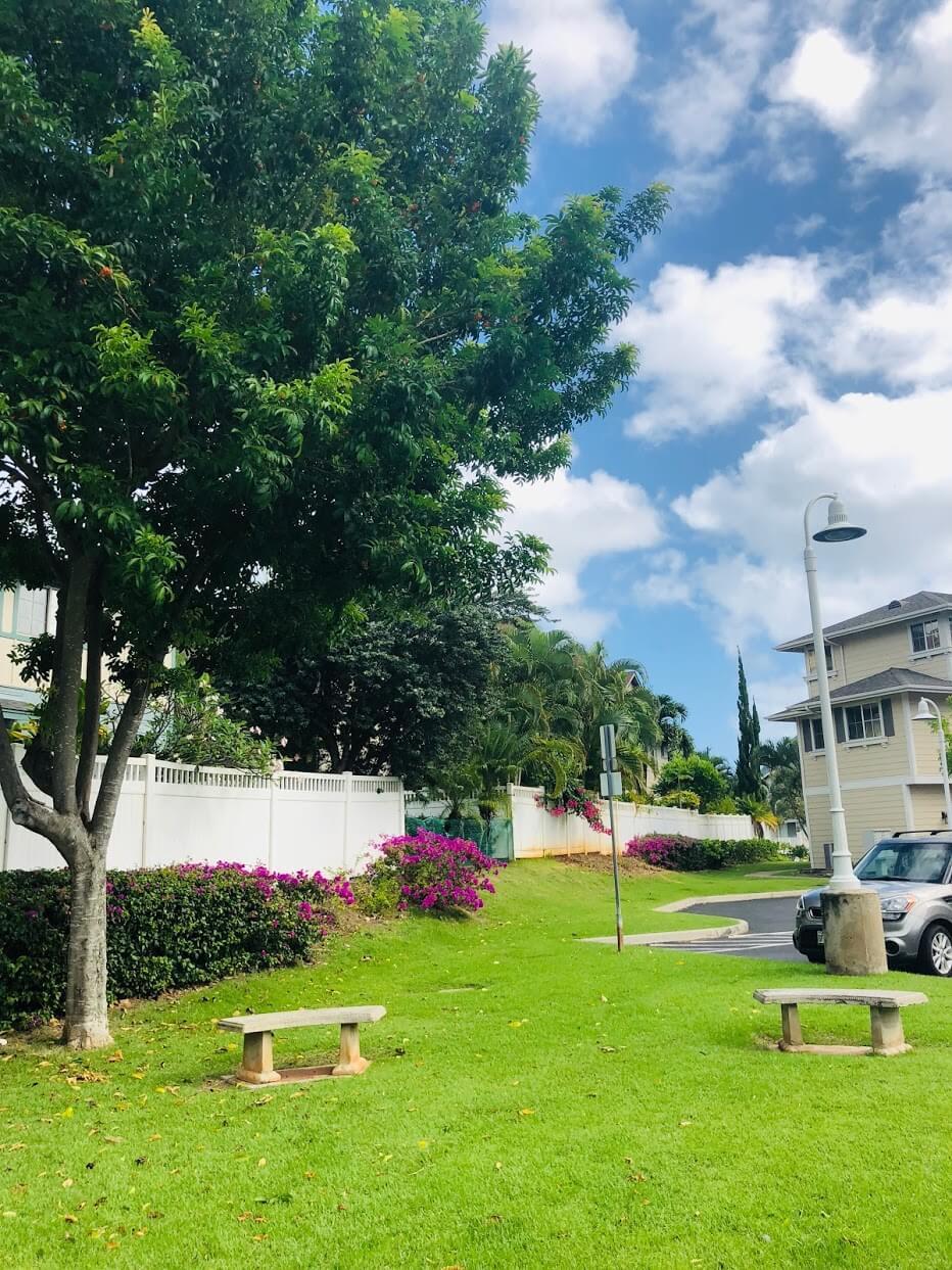Nanea Kaiの芝生