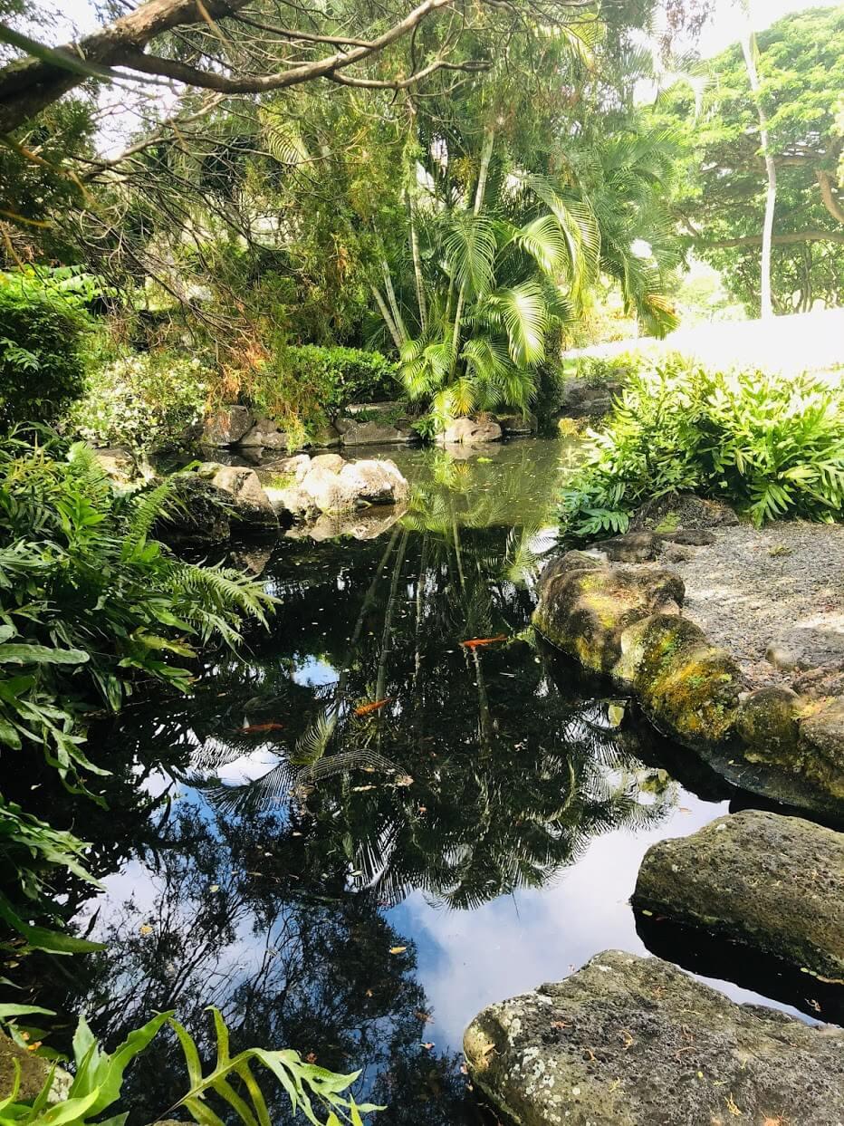 Naniwa Gardensの池