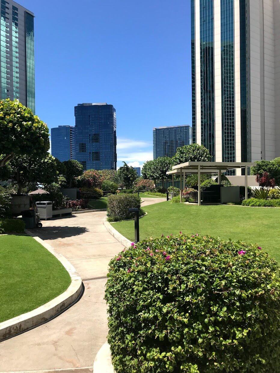 Nauru-Towerの芝生