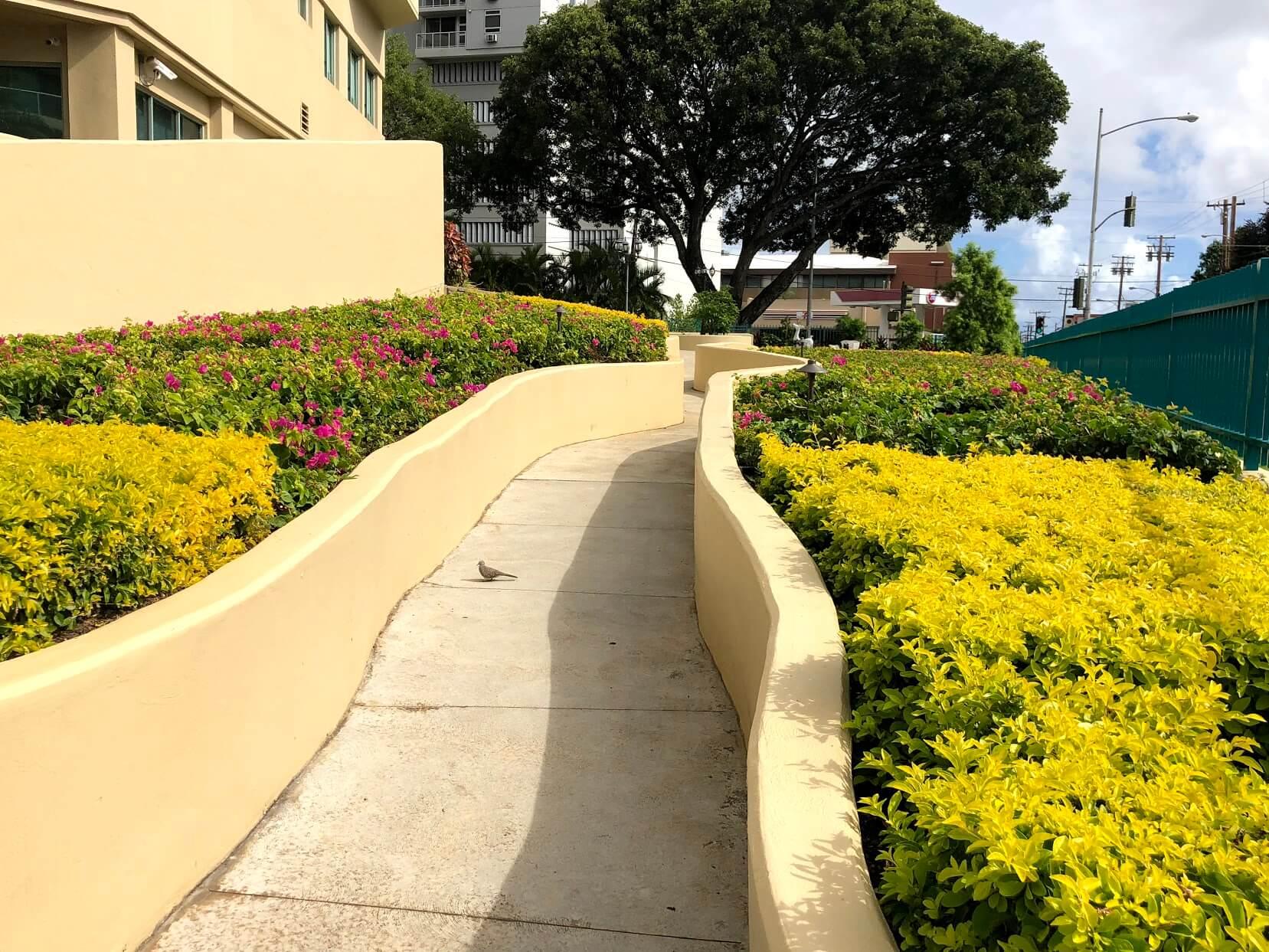 One Kalakauaの歩道