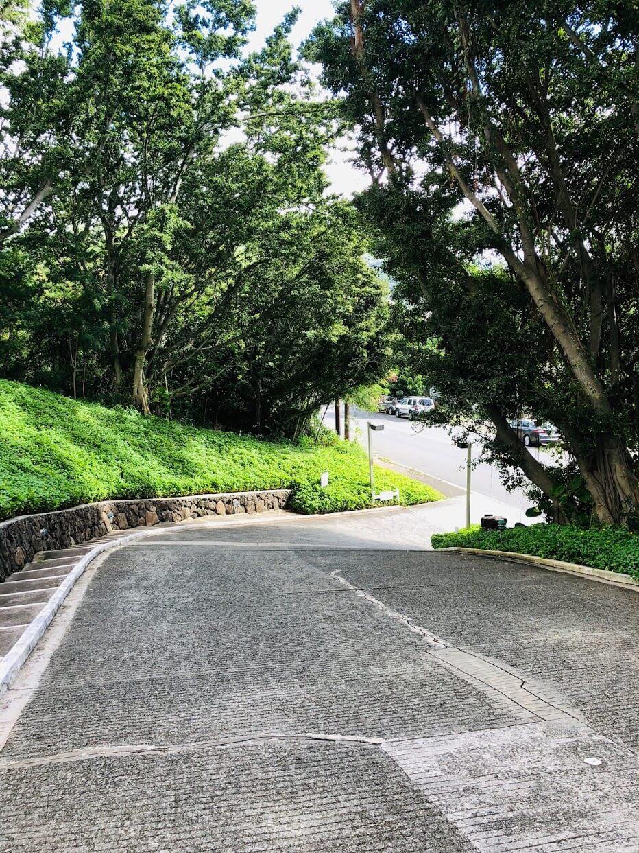 Royal Vistaの道路
