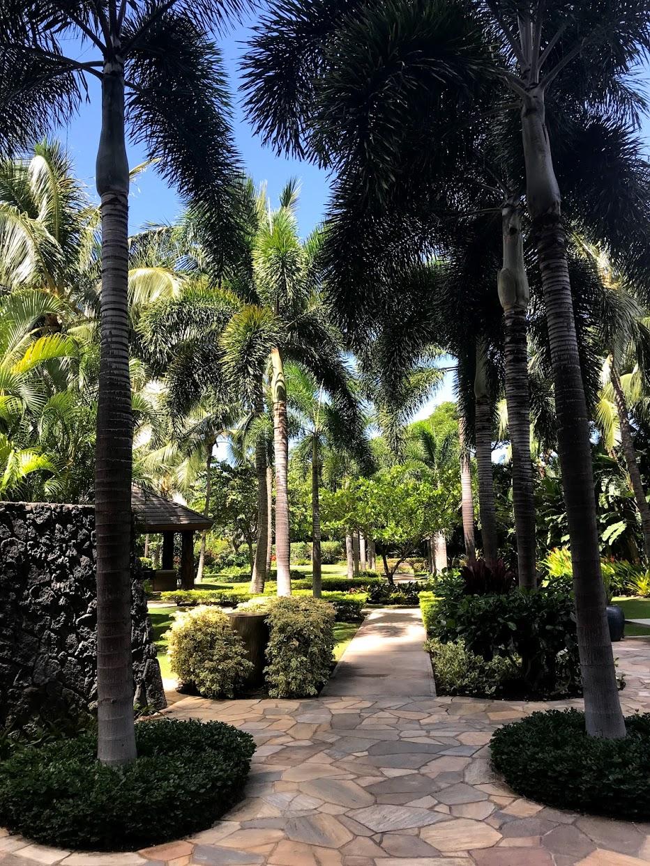 The-Watermarkの庭