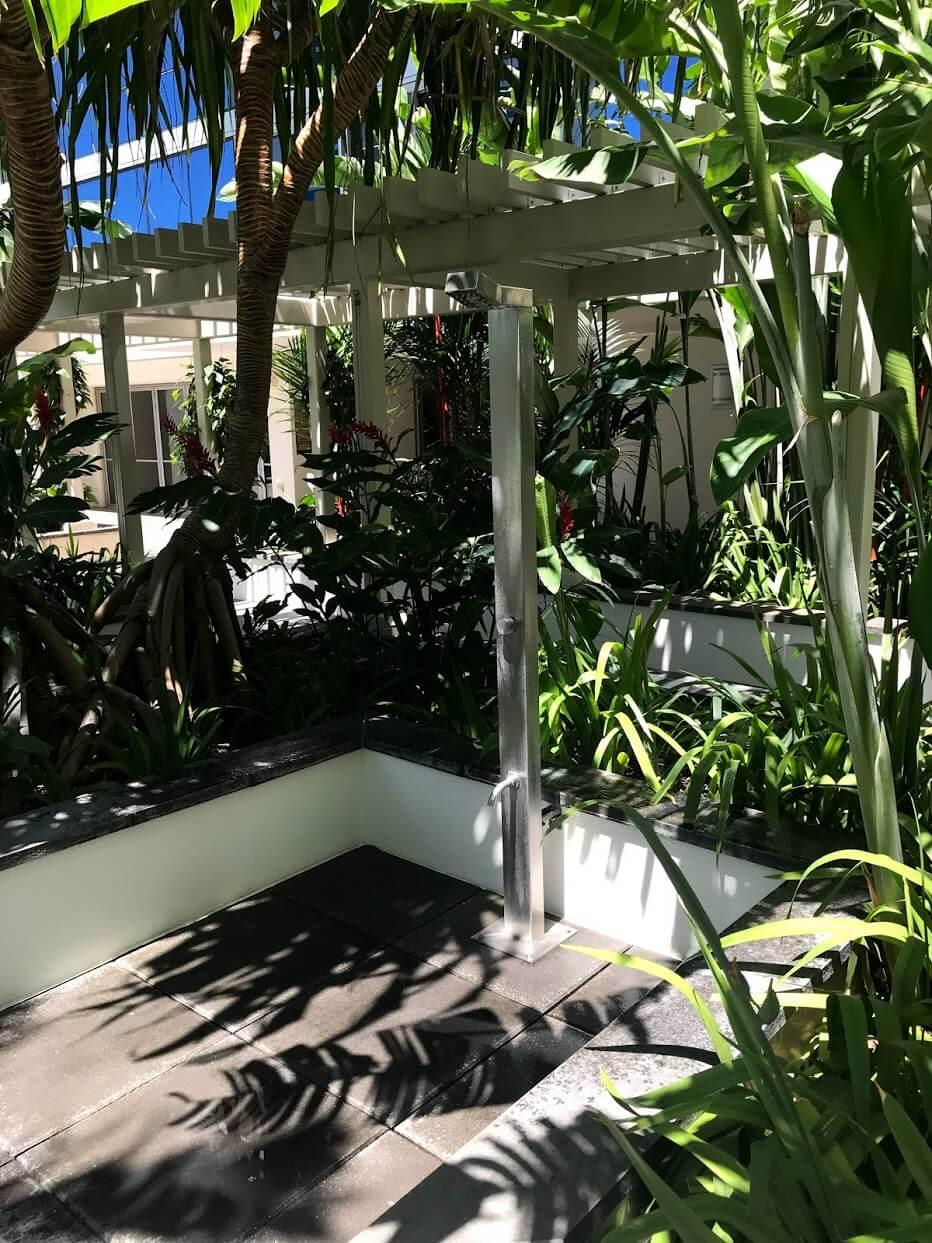 Waihonuaの植物