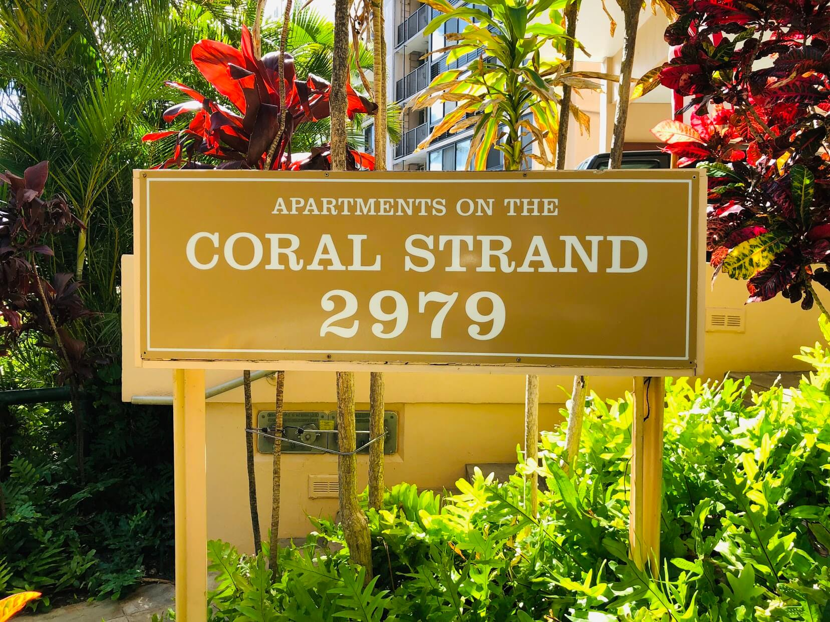 coral Stand 2979の看板