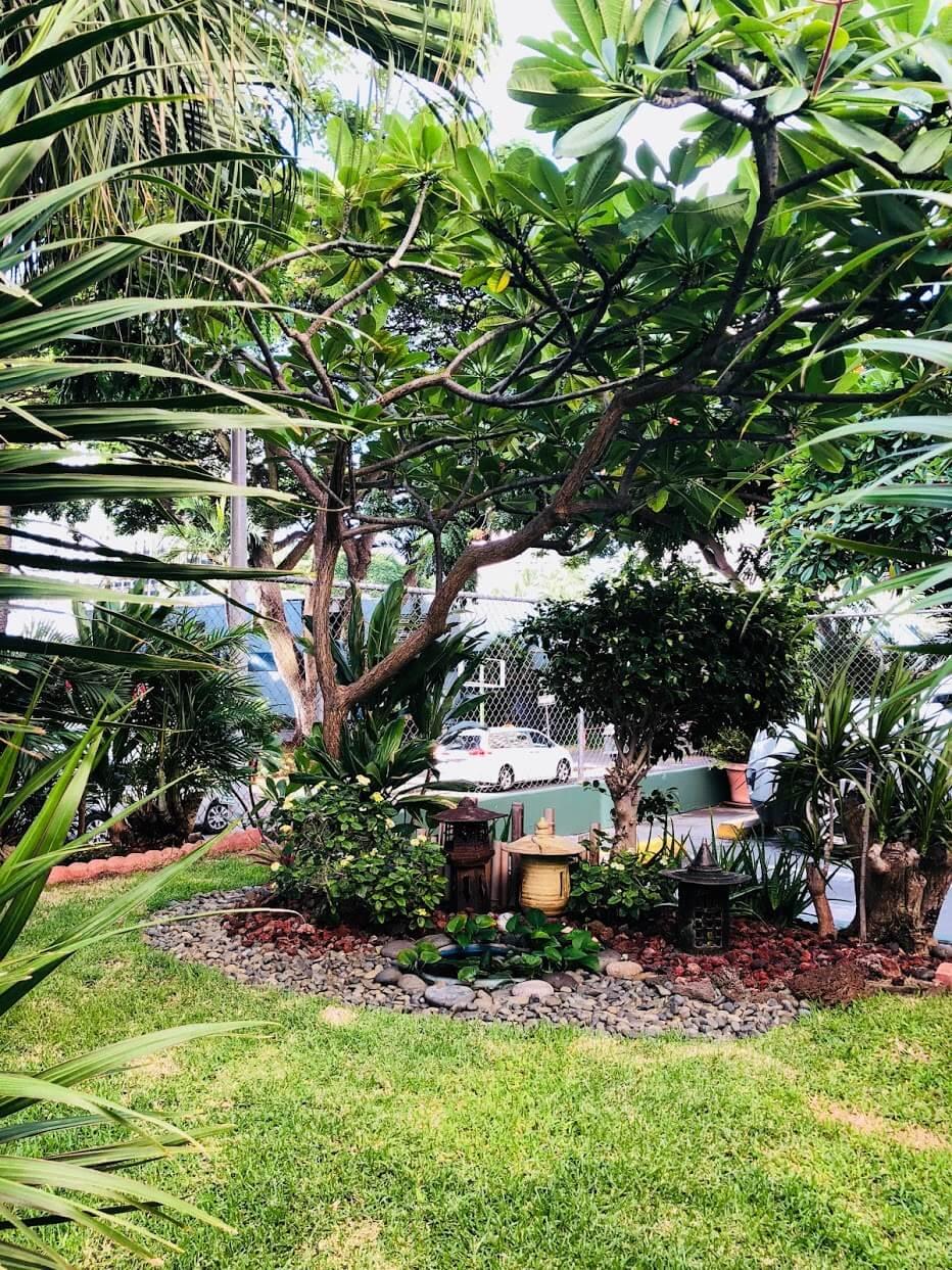 Palmsの庭