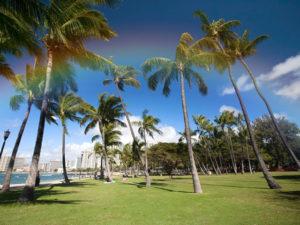ハワイ移住の始め方